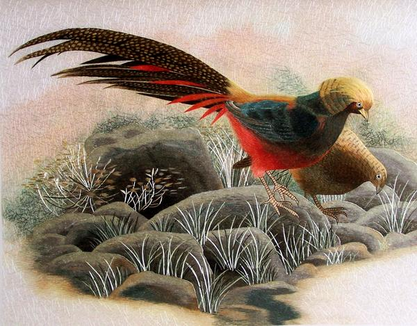 silk embroidery pheasant painting