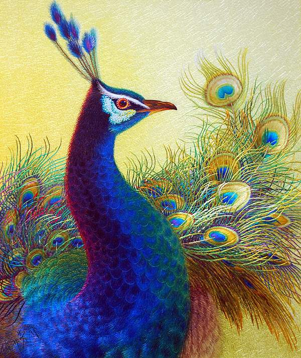 yue embroidery peacock