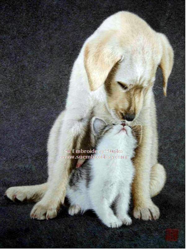 cat and dog silk embroidery